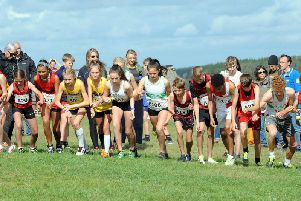 Cross-country action at Goodwood / Picture by Kate Shemilt