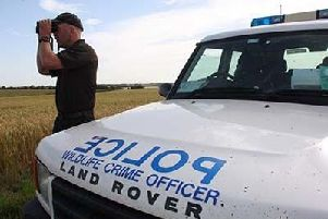 New figures reveal that the number of reports of hare coursing in Lincolnshire has significantly reduced since 2016. EMN-190213-123205001