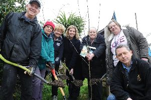 Trees have been planted in Paulsgrove. Pictured: Dennis David, Pauline Powell, Sara Lom, Penny Mordaunt MP, Trish Bell, Cllr Gemma New and John Hale. Picture: Habibur Rahman