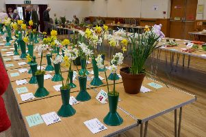 Worthing West MP Sir Peter Bottomley was among visitors to Rustington Horticultural Association's spring show