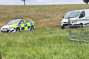Police have stepped up patrols since the spate of attacks on sheep in Northamptonshire