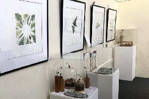 Jewellery and prints by Su France. Picture: Sue Nicholls.