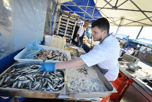 Hastings Seafood and Wine Festival 2019. SUS-190915-141959001