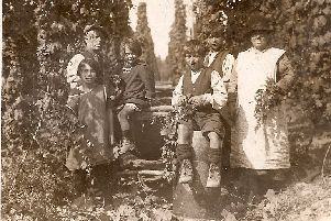 Early 1900s, hop-picking: on the right, Moses and Hiram with their mother, Sarah Tidy, n�e Scarrott; on the left: other relatives