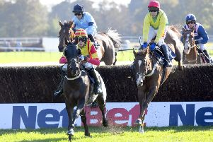 Racing at Fontwell Park can go ahead as planned on Thursday / Picture by Malcolm Wells