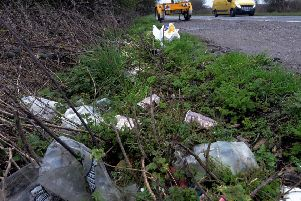 Litter on the side of a Steyning road