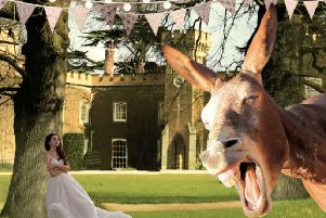 A Midsummer Night's Dream is being performed at Knepp Castle, West Grinstead, in June