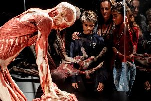 Body Worlds in London. Picture: Jeff Moore