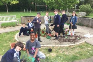 Pupils planting for Horsham in Bloom