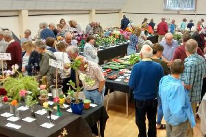Mannings Heath Horticultural Society summer show sees record entries SUS-190813-115241001