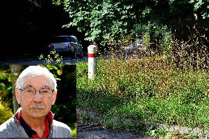 George Cox (inset) and the 'eyesore' grass verge in Haywards Heath. Photo by Steve Robards