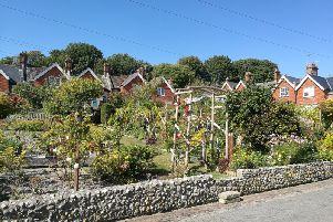 Meads village allotments