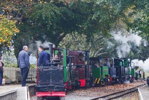 Steam  loco cavalcade at Page's Park, Chaloner leading... Photo: Mervyn Leah