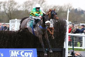 Kimberlite Candy jumps the final fence in the McCoy Contractors Civil Engineering Classic Handicap Chase. Picture: www.dwprattracingphotography.co.uk
